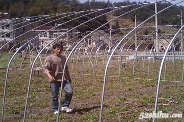 石斛种植大棚建设方法
